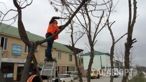 В Хасавюрте начата работа по благоустройству городских улиц