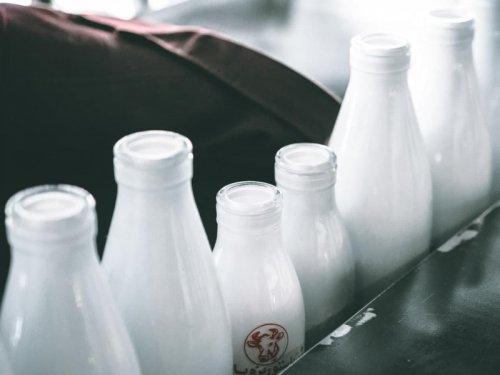 Вебинар «Особенности маркировки средствами идентификации молочной продукции»