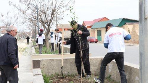 В Хасавюрте стартовала акция «Сад памяти»