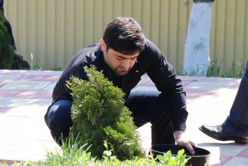 Сотрудники мэрии Хасавюрта присоединились к акции «Сад памяти»